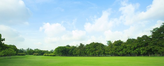 green field with blue sky land insurance quote